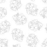 Sambac do Jasminum - Jasmine Outline Seamless Background árabe Ilustração do vetor ilustração stock