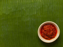 sambal sås för chili Royaltyfri Foto