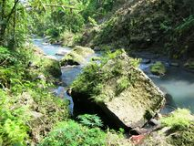 Sambangan geheime tuin in Bali, Indonesi? stock afbeelding