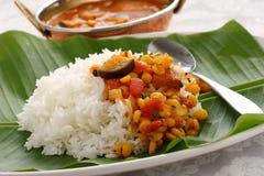 Sambar e arroz, culinária indiana sul fotos de stock royalty free