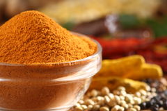 Sambar powder. Sambar curry powder in a glass bowl along with all spice ingredients Stock Photography