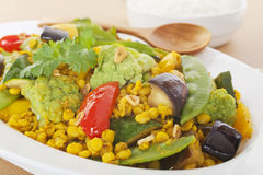 Sambhar印第安素食食物咖喱 库存图片