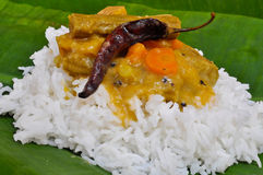 Sambhar Rice Stock Photo