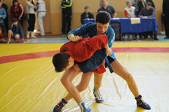 Sambo competitions Stock Photography