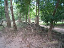 Sambor Prei Kuk w Kambodża Zdjęcia Stock