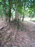 Sambor Prei Kuk w Kambodża Zdjęcie Royalty Free