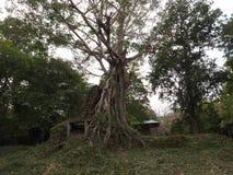 Sambor Prei Kuk w Kambodża Obrazy Royalty Free