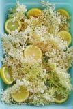 Sambuchi e fette del limone Fotografie Stock