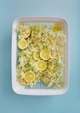 Sambuchi e fette del limone Fotografia Stock Libera da Diritti