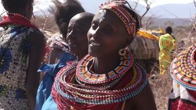 Samburu tribes women dancing. Traditional samburu dance. stock footage
