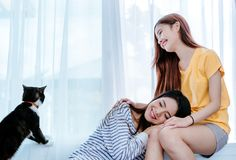 Same sex asian lesbian couple lover playing cute cat pet royalty free stock photography