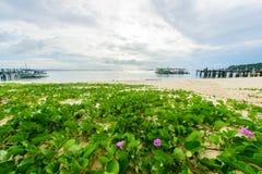 Идилличный пляж сцены на острове Samed, Таиланде Стоковые Фото