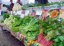 Samedi au marché du ` s d'agriculteur Images stock