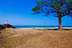 Samela beach. A beach is beautiful, the green tree, the green sea, the sky is blue Royalty Free Stock Photos