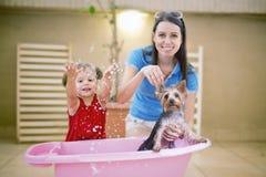 Samen badend hond stock afbeeldingen