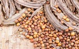 Samen der getrockneten Goabohne und Bohnenhülse auf Bambuskorb Stockbild