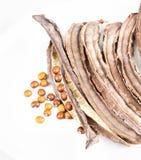 Samen der getrockneten Goabohne und Bohnenhülse auf weißem Teller Lizenzfreie Stockbilder