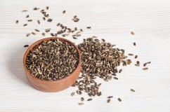 Samen einer Mariendistel Lizenzfreies Stockfoto