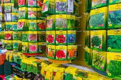 Samen für Gemüsegarten lizenzfreies stockfoto