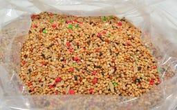 Samen für Sittiche Stockbild