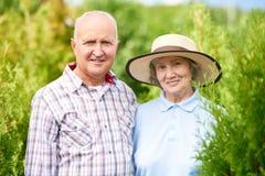 Samen houdend van het Hogere Paar Stellen in Tuin royalty-vrije stock foto's