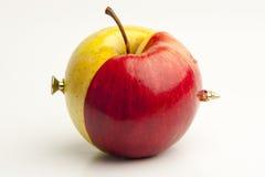 Samen verbonden twee verschillende appelen royalty-vrije stock foto's