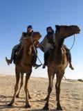 Samen in woestijn Royalty-vrije Stock Foto's
