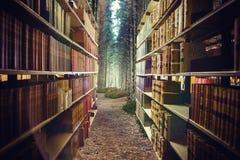Samengesteld beeld van dichte omhooggaand van een 3d boekenrek Royalty-vrije Stock Foto's