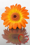 Samengesteld beeld van hart Royalty-vrije Stock Foto