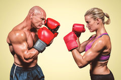 Samengesteld beeld van zijaanzicht van boksers met het bestrijden van houding Royalty-vrije Stock Foto's