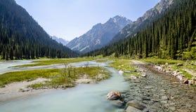 Samenloop van zuivere en modderige rivieren op weg Royalty-vrije Stock Foto