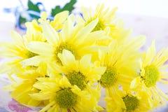Samenstelling met bloemen. Stock Afbeelding