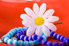 Samenstelling met bloemen. Stock Fotografie