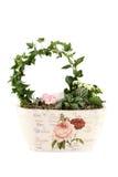 Samenstelling met de bloemen en de installaties Royalty-vrije Stock Afbeeldingen