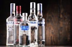 Samenstelling met flessen van globale wodkamerken Royalty-vrije Stock Afbeeldingen