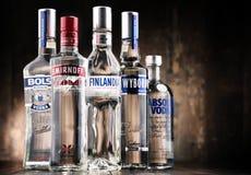 Samenstelling met flessen van globale wodkamerken Royalty-vrije Stock Afbeelding