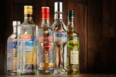 Samenstelling met flessen wodka Royalty-vrije Stock Afbeelding