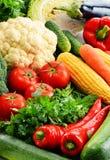 Samenstelling met verscheidenheid van verse ruwe organische groenten Royalty-vrije Stock Afbeeldingen