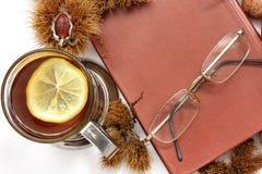 samenstelling Thee met citroen, een gesloten boek, glazen en kastanjes stock fotografie