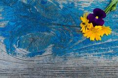 Samenstelling van bloemen van calendula en viooltjes bovenop een oude houten geschilderde raad met pennen stock fotografie
