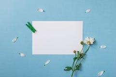 Samenstelling van de de lente de hoogste mening stock afbeeldingen