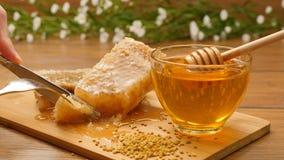Samenstelling van honing en honingraat Ð ¡ ut een stuk van honingraat (Nr 12 2) stock videobeelden