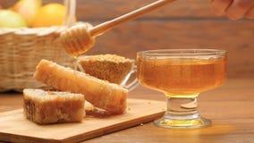 Samenstelling van honing, honingraat en bijenbrood Honing het gieten op honingraat (Nr 4) stock footage