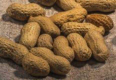 Samenstelling van pinda's die olie dienen te maken, pindakaas Groot voor gezonde en dieetvoeding Concept van: droge specerijen, stock fotografie