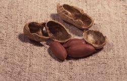 Samenstelling van pinda's om olie te maken, pindakaas Groot voor gezonde en dieetvoeding Concept van: specerijen, gedroogd fruit, stock fotografie