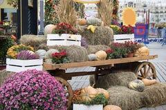 Samenstelling van pompoenen met hooi, oren van tarwe, kartonzon en bloemen op een oude kar voor de herfstdecoratie op marktplaats royalty-vrije stock afbeeldingen