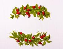 Samenstelling van rode bloemen, bessen en groene bladeren op een wit Stock Fotografie