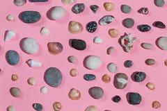 Samenstelling van stenen en zeeschelpen die op de roze achtergrond worden geïsoleerd royalty-vrije stock fotografie