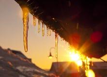 Samenvatting bevroren ontdooiende ijskegels Royalty-vrije Stock Fotografie