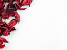 Samenvatting met droge rode bloemblaadjes op witte achtergrond Stock Foto